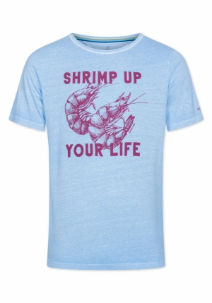 shrimp up logo