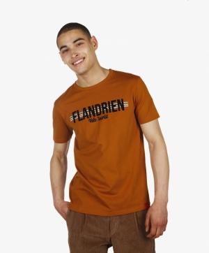 FLANDRIEN logo